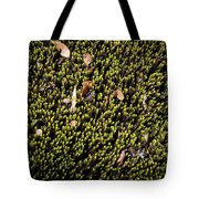 Nature Detail Tote Bag