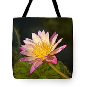 Natures Brilliance Tote Bag
