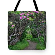 Nature's Tunnel Tote Bag