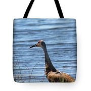 Near The Water Tote Bag