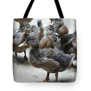 New Feathers Tote Bag