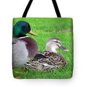 New Zealand - Mallard Ducks Tote Bag
