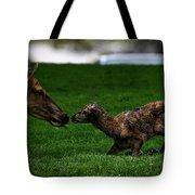 Newborn Elk Tote Bag
