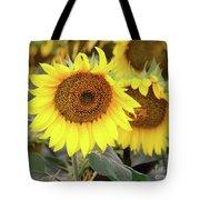 Nice Sunflowers Tote Bag