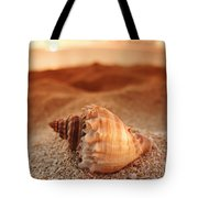 North Shore Seashell Tote Bag