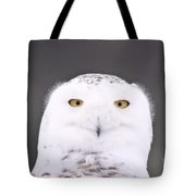 Snowy Owl 3256 A.k.a. Smiling Owl Tote Bag