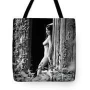 Nude Art Photography By Mary Bassett Tote Bag