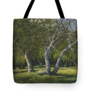 Oaks Tote Bag by Marv Anderson