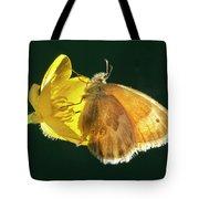Ochre Ringlet Butterfly Tote Bag