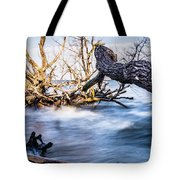 Old Dead Trees On Shores Of Edisto Beach Coast Near Botany Bay P Tote Bag