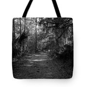 Old Florida Tote Bag