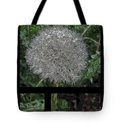One Dandy Lion 3 Tote Bag