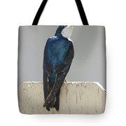 Ooooh My Swallow Tote Bag