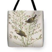 Orange Crowned Warbler Tote Bag