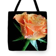 Orange Peach Rose Tote Bag by Tracy Hall