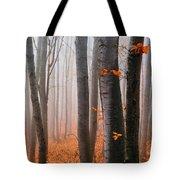 Orange Wood Tote Bag by Evgeni Dinev