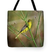 Orchard Oriole Tote Bag