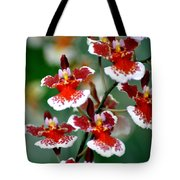 Orchid 34 Tote Bag