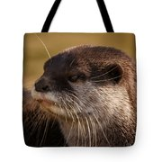 Oriental-small-clawed-otter Tote Bag