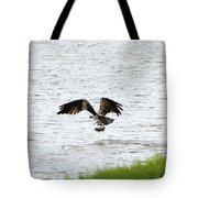 Osprey Fishing In The Afternoon Tote Bag
