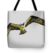 Osprey Looking For Lunch Tote Bag