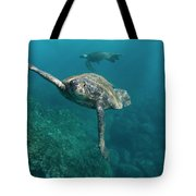 Pacific Green Sea Turtle Chelonia Mydas Tote Bag