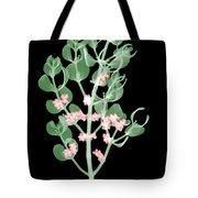 Pacific Mistletoe, Phoradendron Tote Bag