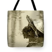 Painted Turtle On Mud In A Marsh Tote Bag
