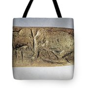 Paleolithic Tool Tote Bag