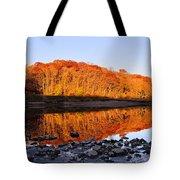 Palisades-kepler State Park - Mt. Vernon, Ia Tote Bag