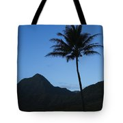 Palm And Blue Sky Tote Bag