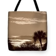 Palms In The Clouds Tote Bag