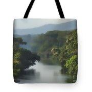 Panama014soft Tote Bag