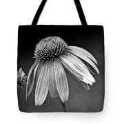 Passages Bw Tote Bag by Steve Harrington