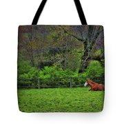 Pasture Napping Tote Bag