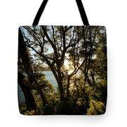 Patagonia Landscape Tote Bag