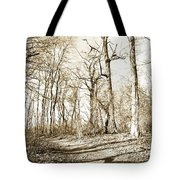 Path In A Forest Tote Bag