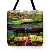 Patterns Of Shadow And Sunlight Tote Bag