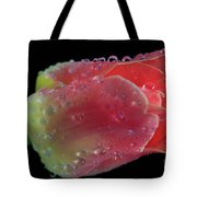 Peachy Tote Bag by Tracy Hall