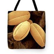 Pear Pollen Grains, Sem Tote Bag