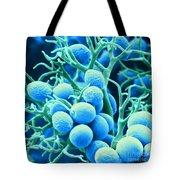 Peronospora Parasitica Tote Bag by Biophoto Associates and Photo Researchers