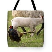 Pheasant And Lamb Tote Bag
