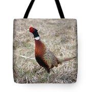 Pheasant Rooster Tote Bag