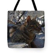 Phoelix Tote Bag