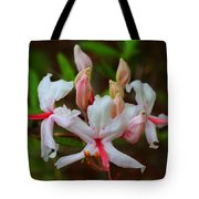 Piedmont Azalea Tote Bag
