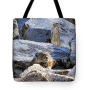 Mountain Pika Tote Bag