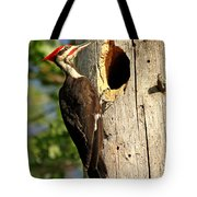 Pileated #26 Tote Bag