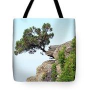 Pine Tree On A Rock Tote Bag