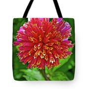 Pink And Yellow Dahlia In Golden Gate Park In San Francisco, California  Tote Bag