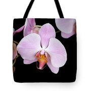 Pink Orchid Vii Tote Bag